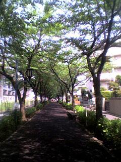 yuhodo.jpg